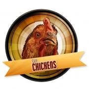 shychickens-logo